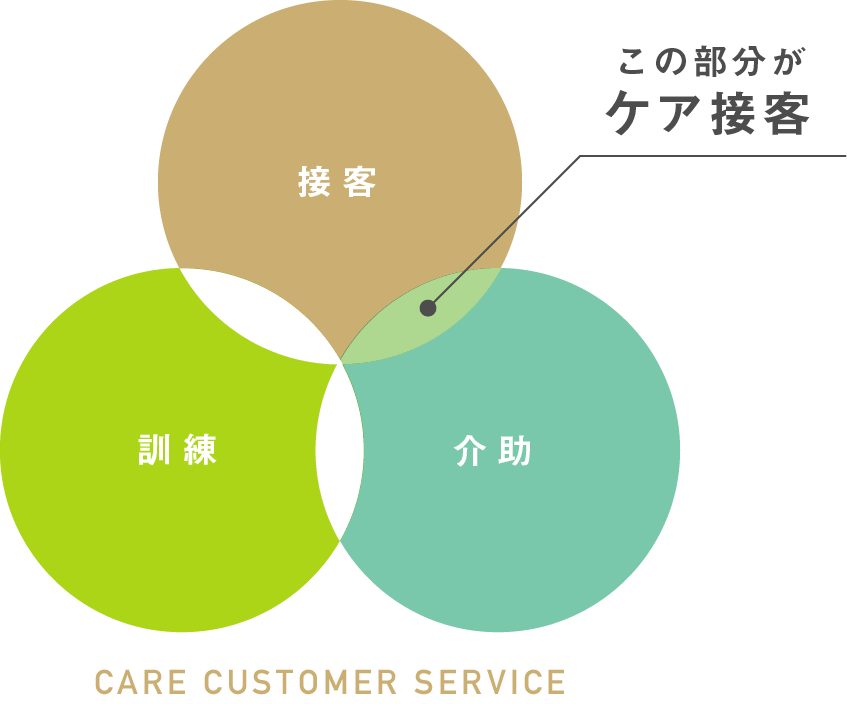 CARE CUSTOMER SERVICE